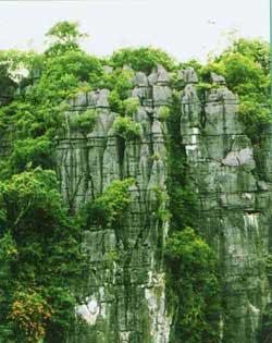 Tháp Karst ở Phong Nha - Kẻ Bàng